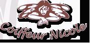Coiffeur Nicole Logo